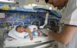 Искусственная матка открывает новые возможности в материнстве!