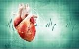 Новая разработка искусственного сердца дает надежду на жизнь!