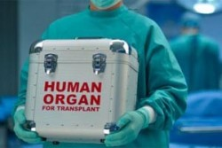 Минздрав завершил работу над проектом закона о донорстве и трансплантации